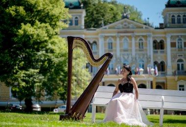 HARFA / koncerty, gala eventy , oslavy , firemní akce, plesy , svatební obřady....