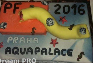 Silvestr v Aquapalace Hotelu Prague