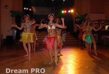 Hawaii aneb Reprezentační ples Střekova