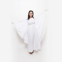 Anděl kostým