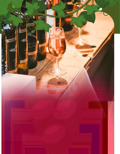 Vína v Sadech aneb Letní biják