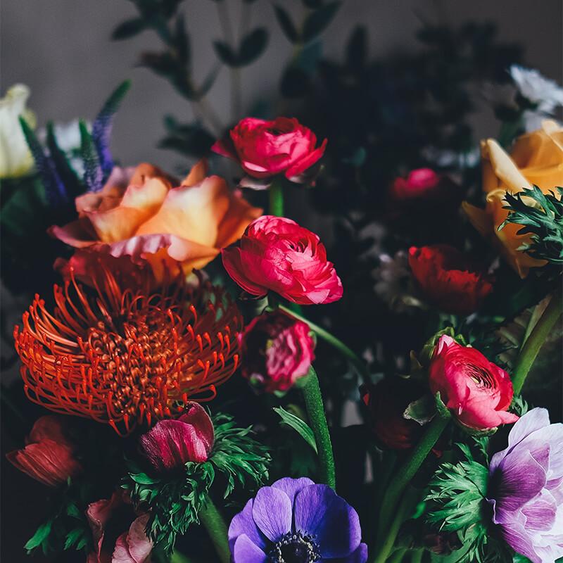 DTIP - Květiny - Mezinárodní den žen - MDŽ